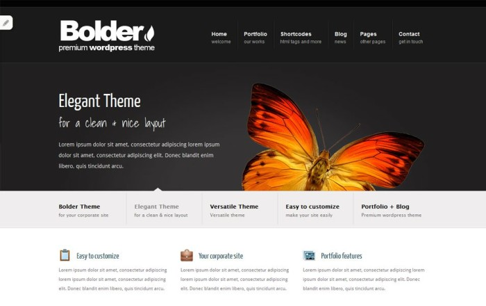 bolder free portfolio wordpress theme e1419455569259 thiet ke web