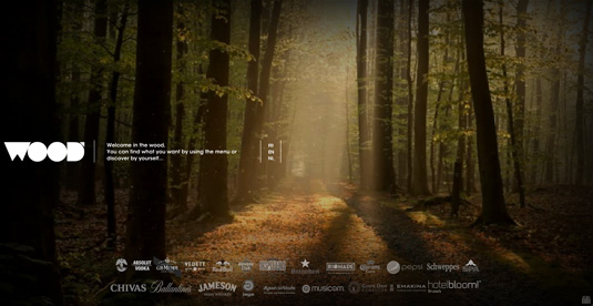 Video background trên website the wood
